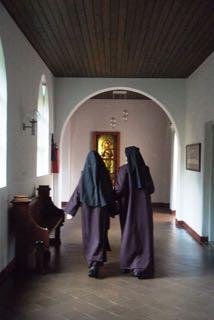Kloosterpad Zenderen weleveld
